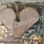 Coeur de bois (04) Riez, Mini-Ranch, 8.12 (c) PhI