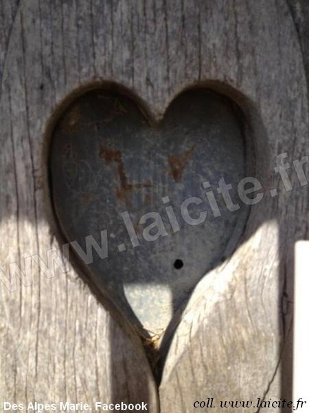 Coeur bois et fer (05)