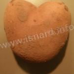 Coeur-patate (04), (c) PhI