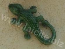 Un des lézards d'une maison en montant à Puimichel (04) 6.8.11 © PhI