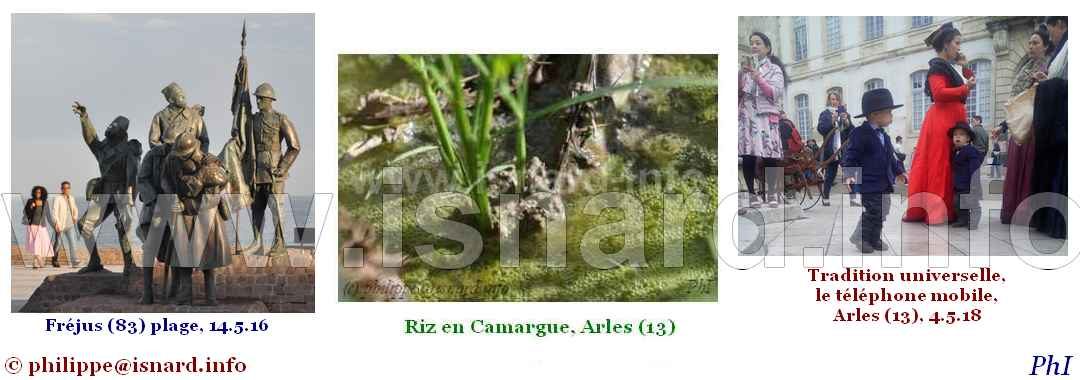 bando Fréjus, Riz en Camargue, Arles, 7.18 © PhI