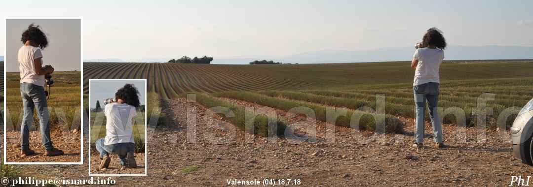 bando, photographe italienne (04) Valensole 18.7.18 © PhI