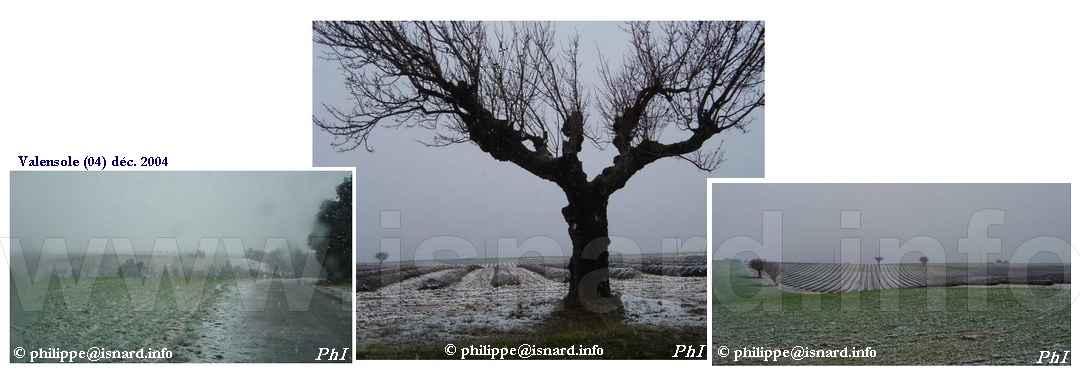 bando Neige à Valensole (04) déc. 2004 © PhI