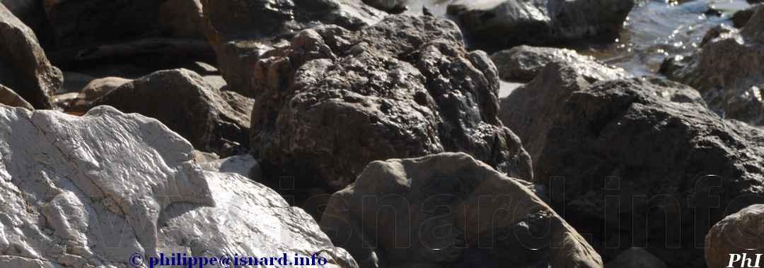 bando pierre, noir et blanc (83) Hyères 2.19 © PhI