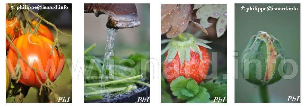 bando Jardin Gap 8.13 © PhI