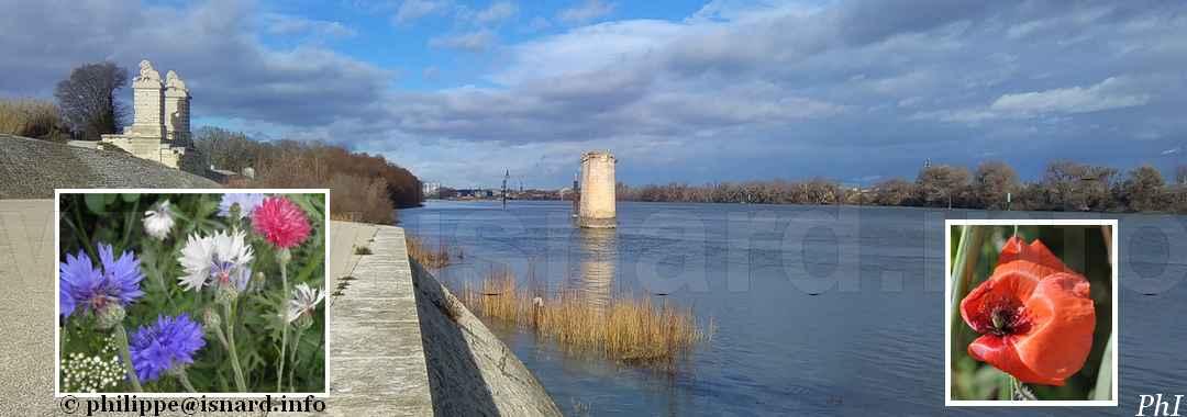 Le Rhône à Trinquetaille (13) Arles 27.12.17 © PhI