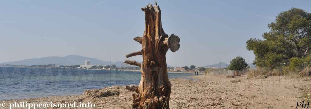 Vue de Hyères (83) d'une plage-promenade 24.2.19  ©PhI