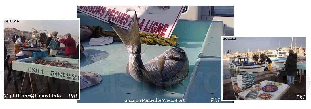 Marché aux poissons (13) Marseille Vieux-Port 2009-2010 © PhI