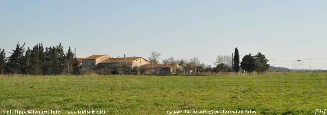 Sur la petite route d'Arles à Tarascon (13) 15.3.20 © PhI