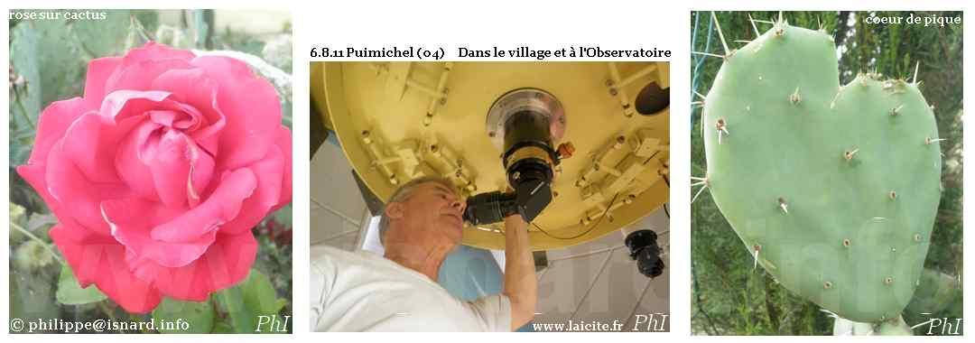 Puimichel (04) dans le village et à l'observatoire 6.8.11 © PhI